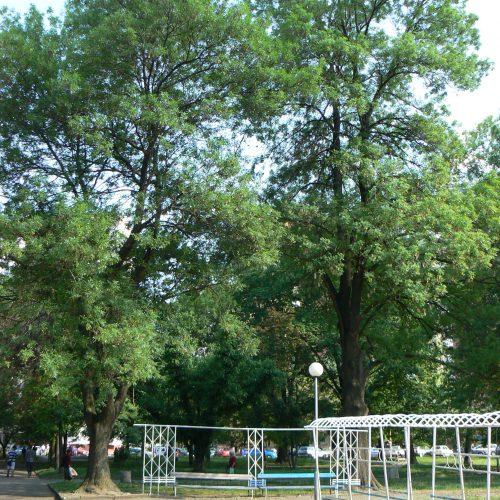 """Парк """"Герена"""", София, 2013г"""