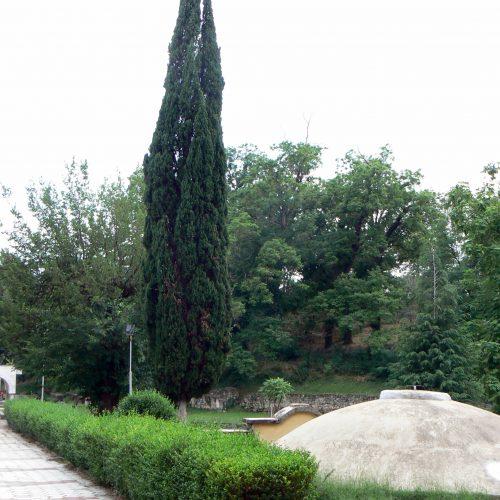 Централна зона Хисаря, 2014г