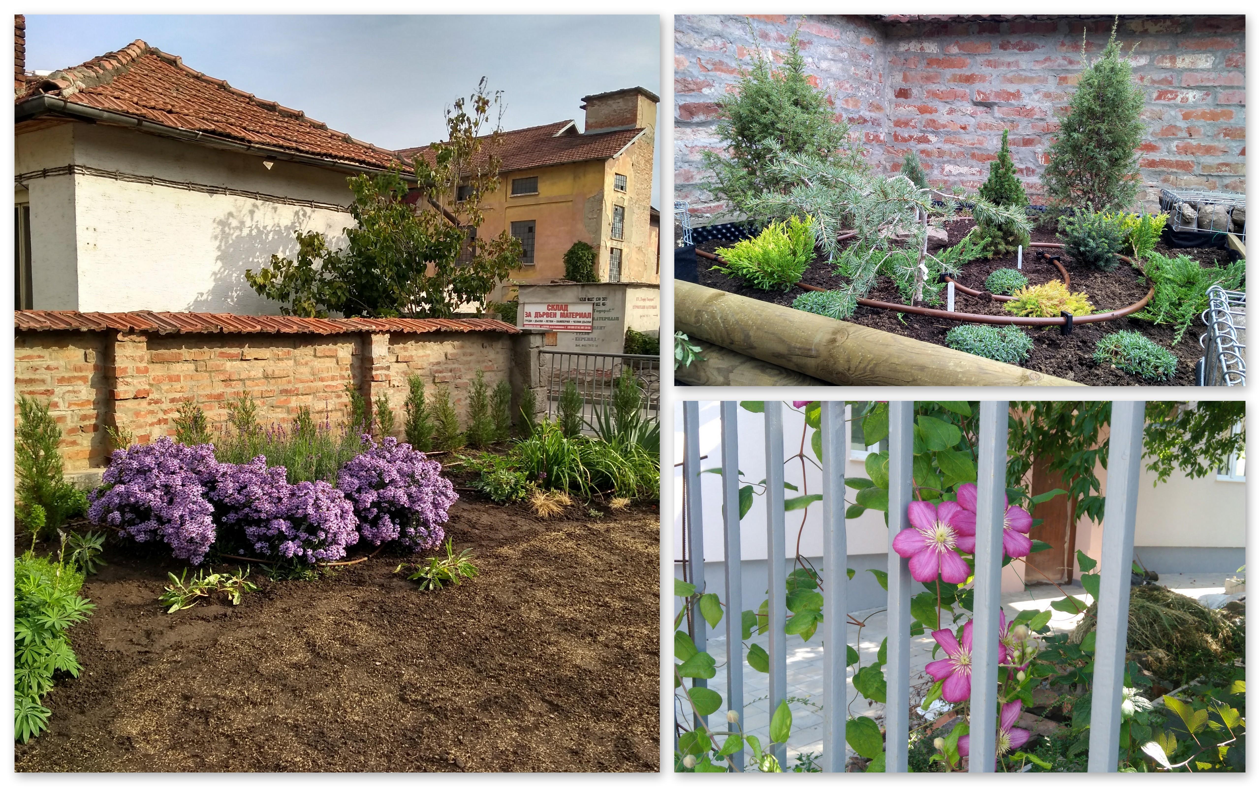 Детайли от градината