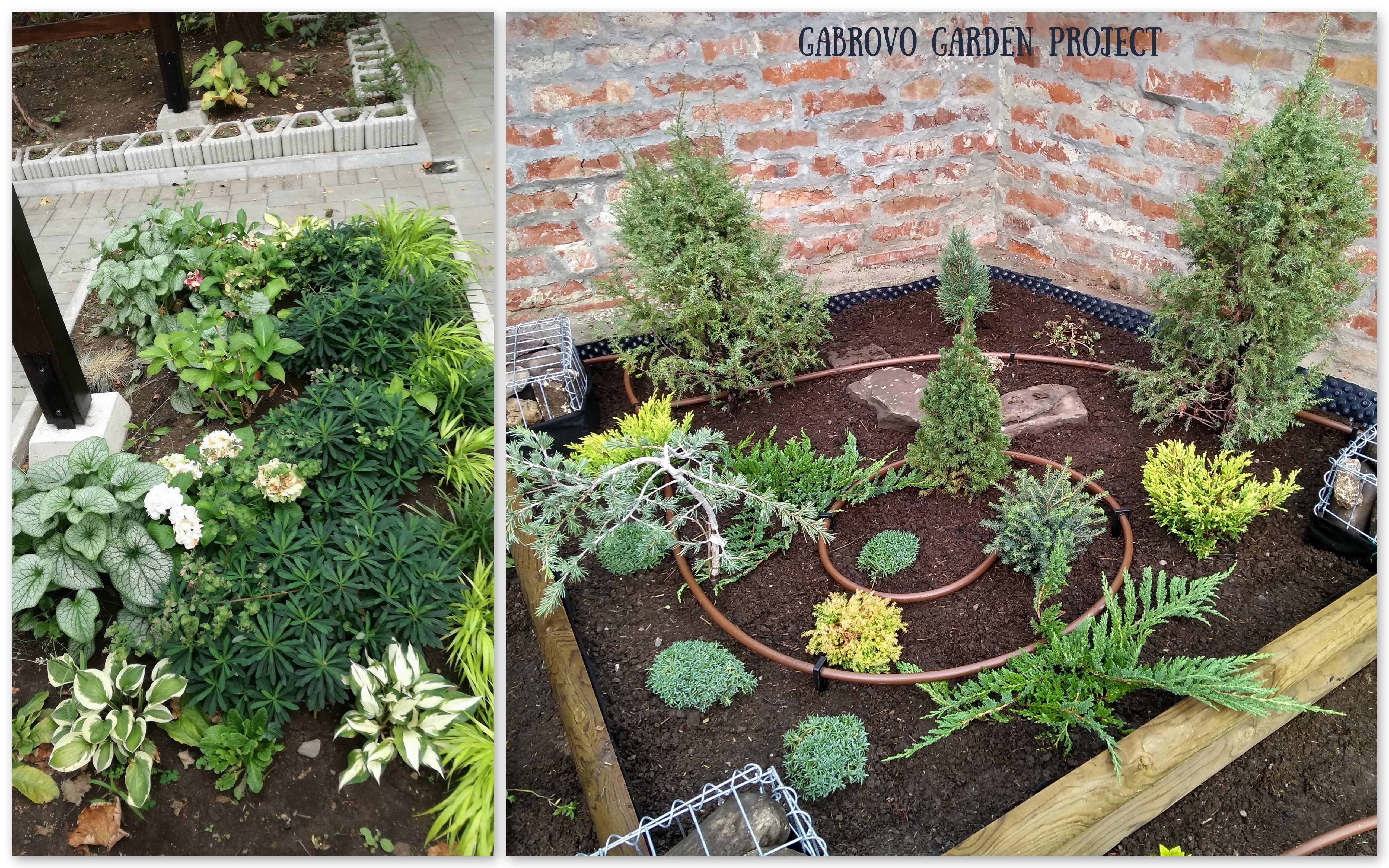 Детайли от градината, Габрово